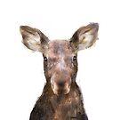 Kleiner Elch von Amy Hamilton