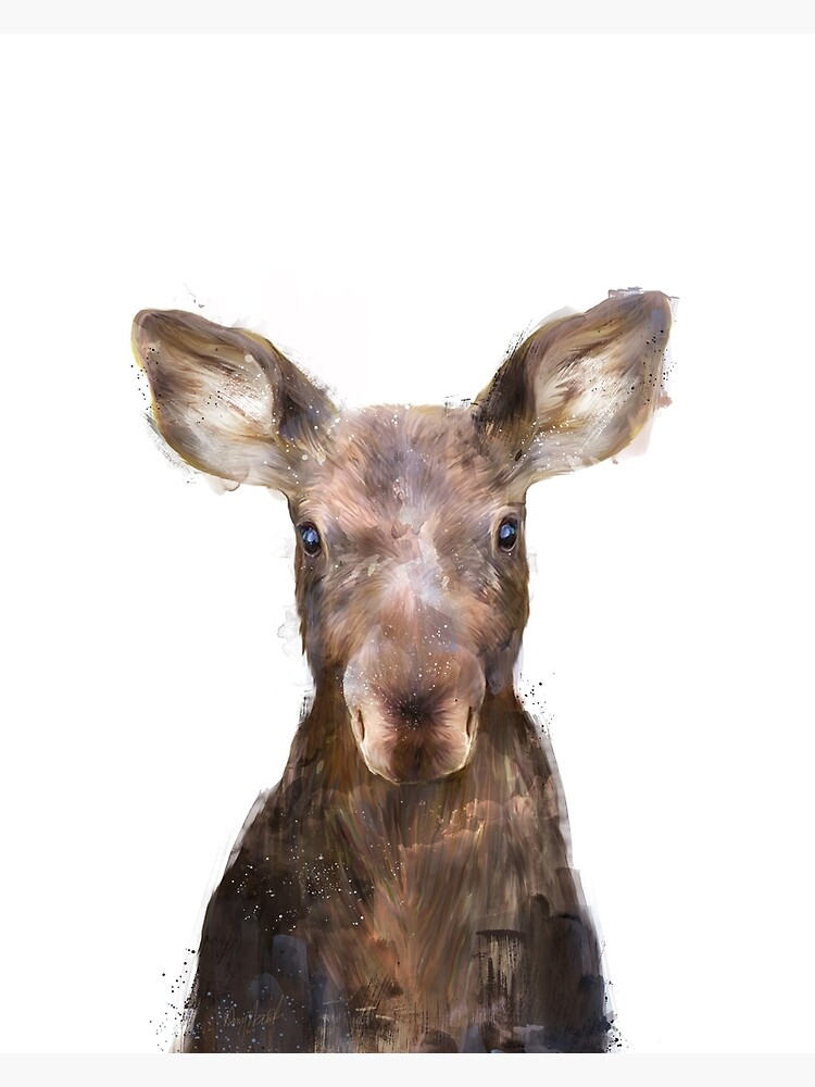 Little Moose by AmyHamilton