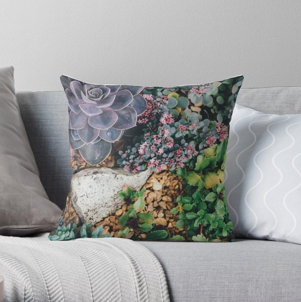 Succulent plants throw pillow Throw Pillow
