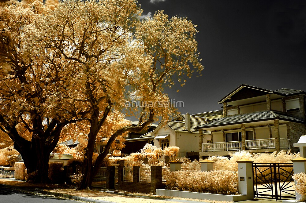 Dean's House in Infrared #2 by anwarsalim