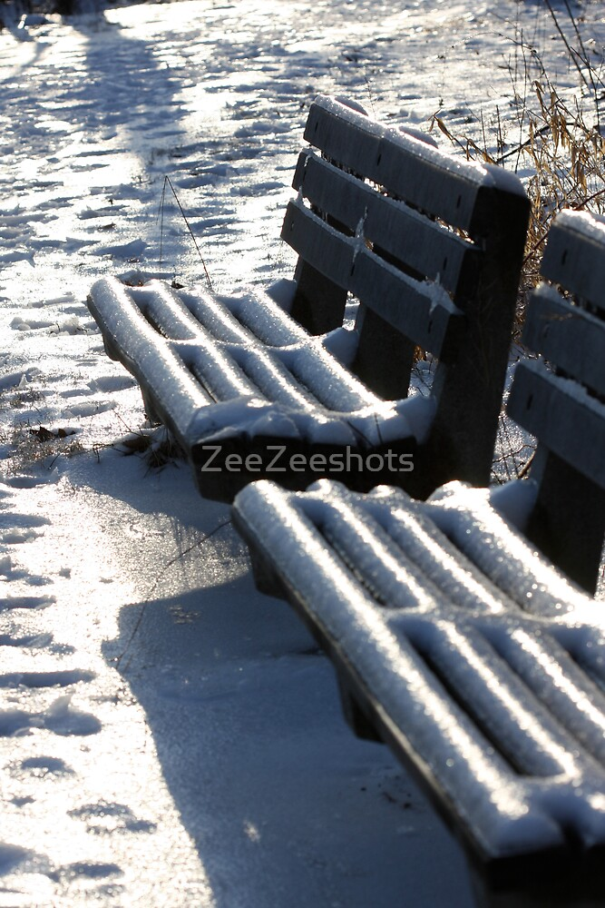 Its too cold to sit by ZeeZeeshots