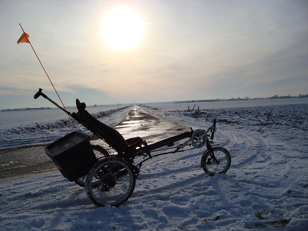 Winter in Holland by Rob van Hooff