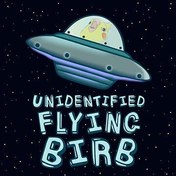 unidentified flying birb by FandomizedRose