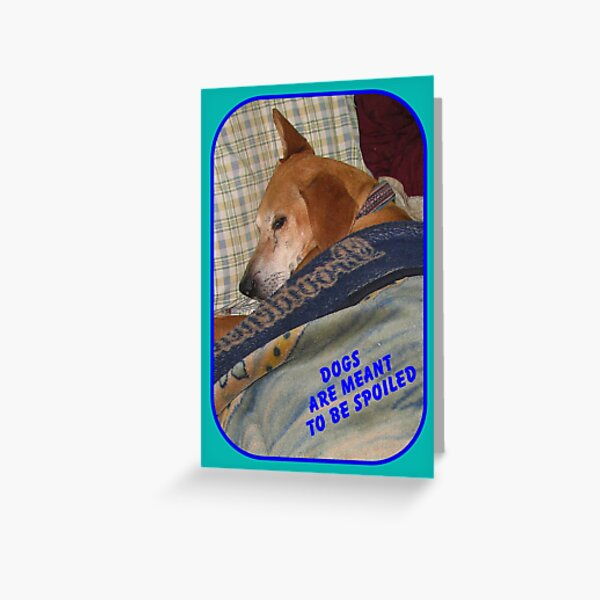 Dogs are Meant to be Spoiled Greeting Card
