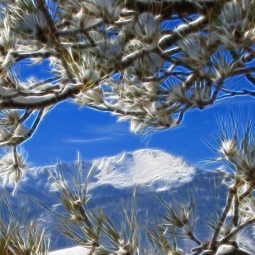 Pikes Peak by Beverlytazangel