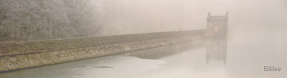 'Frost, fog. water, stone......' by Billlee