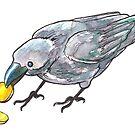 Ooh, Shiny! Crow Illustration by lysswhitart