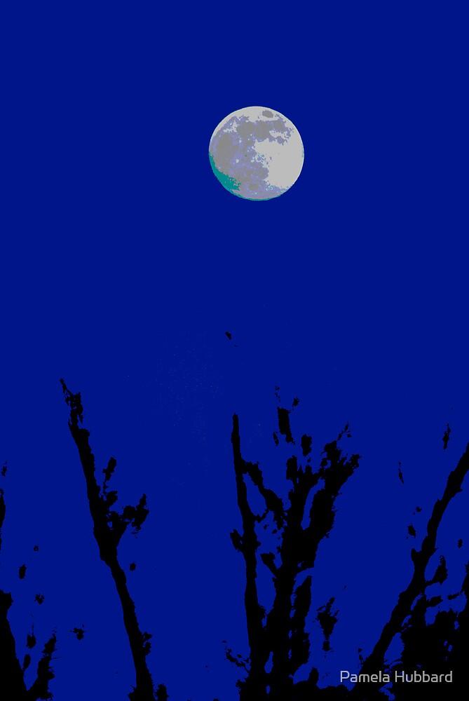 Night by Pamela Hubbard