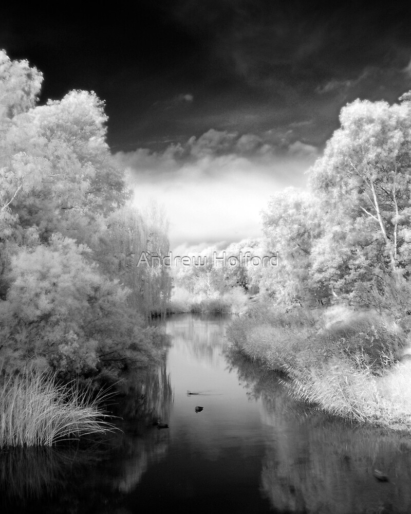 The Creek by Andrew Holford