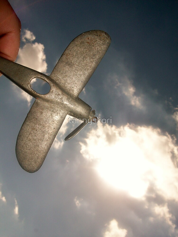 flight by tannyskori