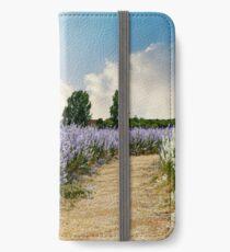 Coloured Landscape iPhone Wallet/Case/Skin
