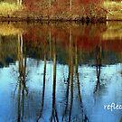 Reflections by Cricket Jones