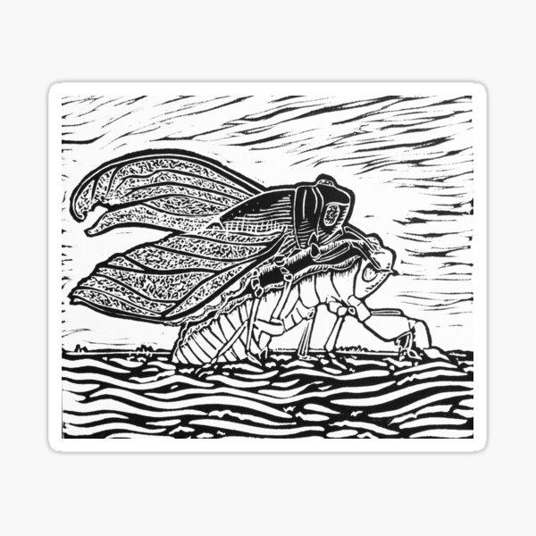 Emerging Cicada Sticker