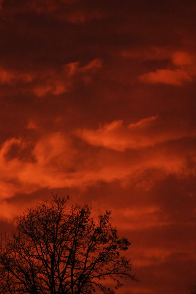 Sky On Fire by Jessica Hardin
