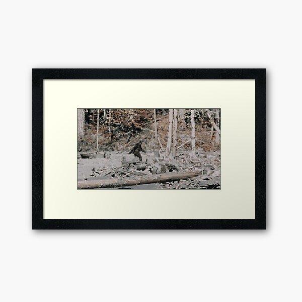 Bigfoot Framed Art Print