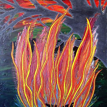 Solstice Fire by Ssid