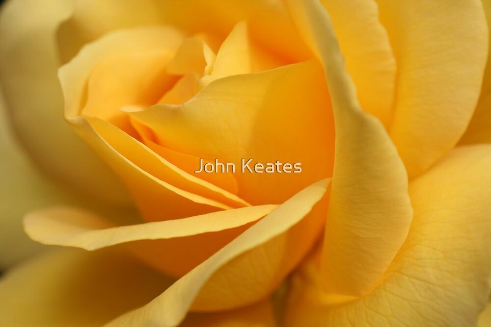 Keep Smiling by John Keates