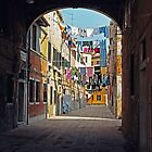 Venice Laundry by Larry Costales