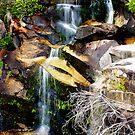 Gibraltar Falls by Melanie Roberts