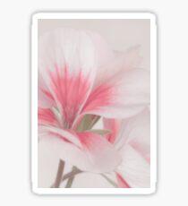 Pollen Showered Geranium Blossom Macro Sticker