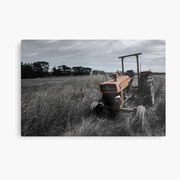 In Retirement Metal Print