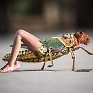 Chimera Bug by Randy Turnbow
