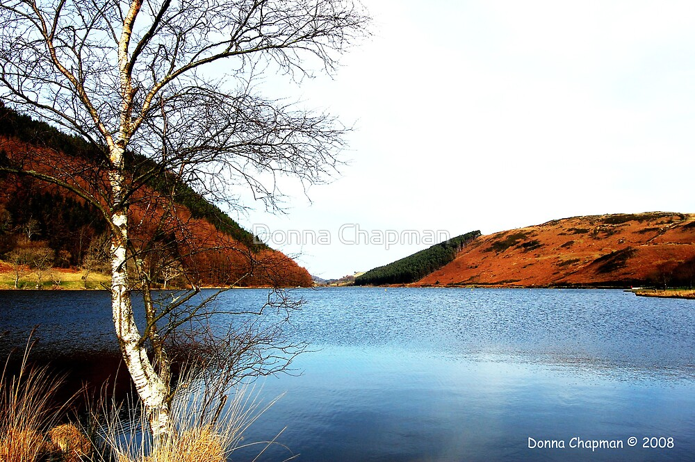 Lake Geryonydd by Donna Chapman