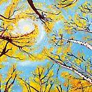 Golden Circle by Scott Clendaniel