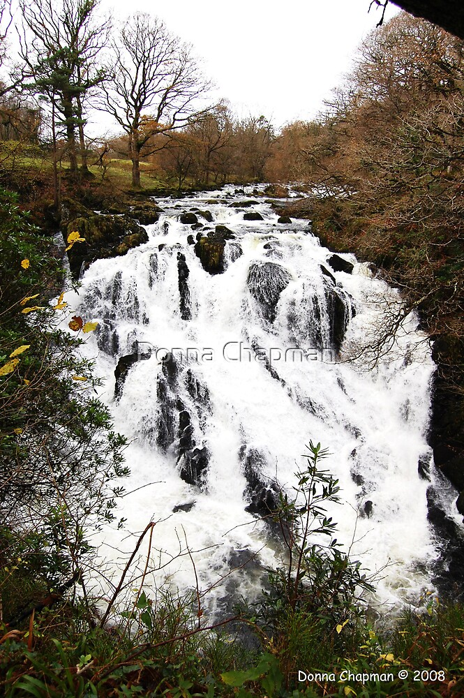 Swallow Falls, Betws-Y-Coed by Donna Chapman