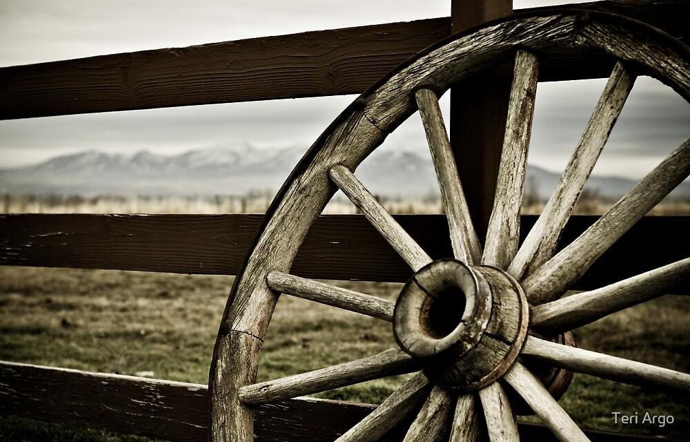 Wagon Wheel by Teri Argo