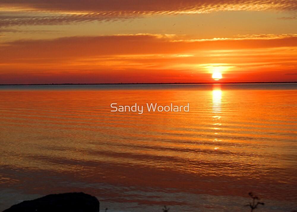 Morning of Hope by Sandy Woolard