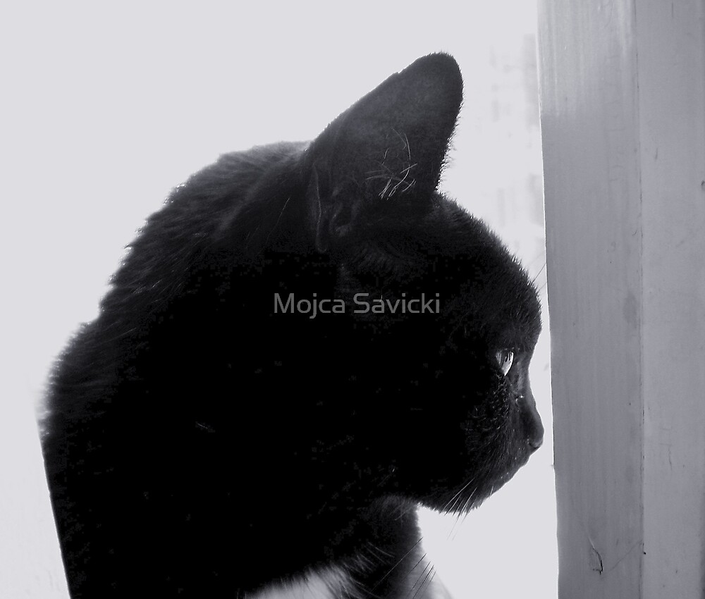 Pensive by Mojca Savicki