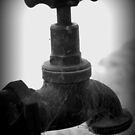 drip,drip,drip,drop by Tom McDonnell