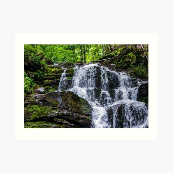 Great waterfall Shypit in Carpathian mountains Art Print