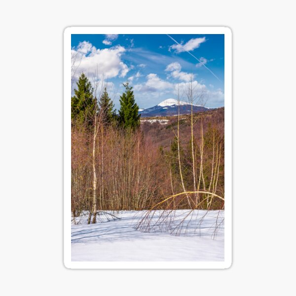 spring is coming to snowy mountain Sticker