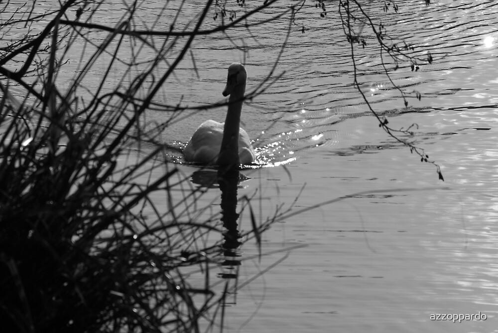 swan by azzoppardo