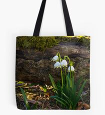 Blooming of White spring Snowflake in forest Tote Bag