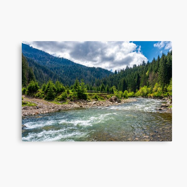 Tereblya river of Carpathan mountains Canvas Print