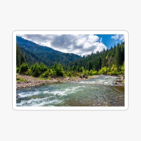 Tereblya river of Carpathan mountains Sticker