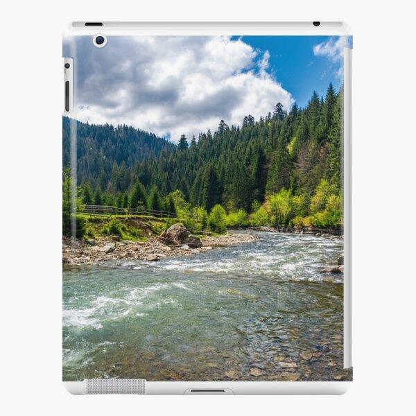 Tereblya river of Carpathan mountains iPad Snap Case