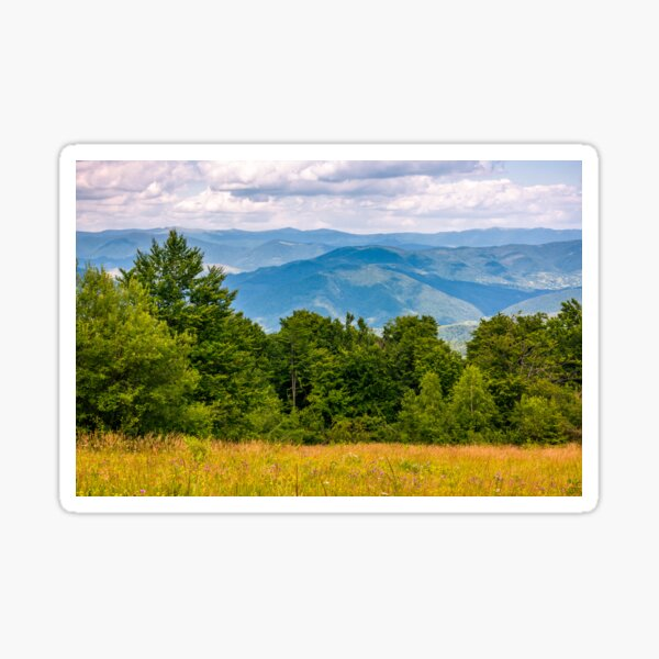 grassy meadow on a forested hillside Sticker