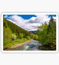 Tereblya river of Carpathian mountains Sticker