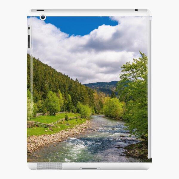 Tereblya river of Carpathian mountains iPad Snap Case