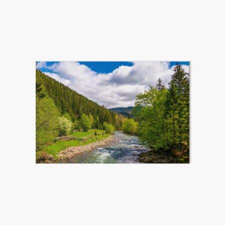 Tereblya river of Carpathian mountains Art Board Print
