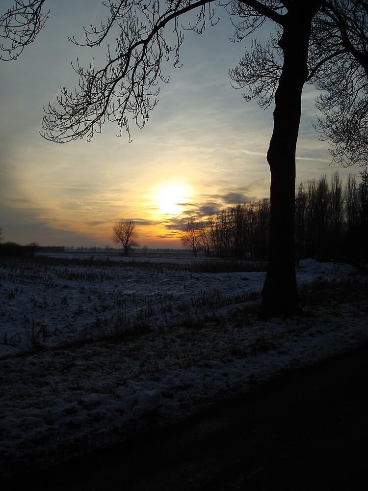 Winter sun. by Rob van Hooff