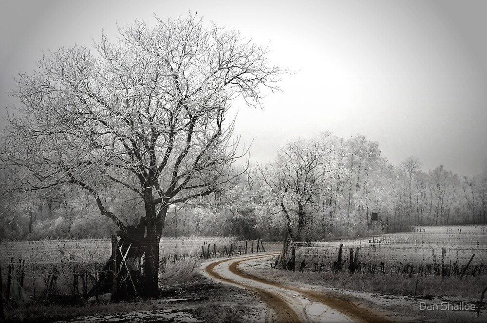 Quot The Long And Winding Road On A Chilly Day Quot By Dan