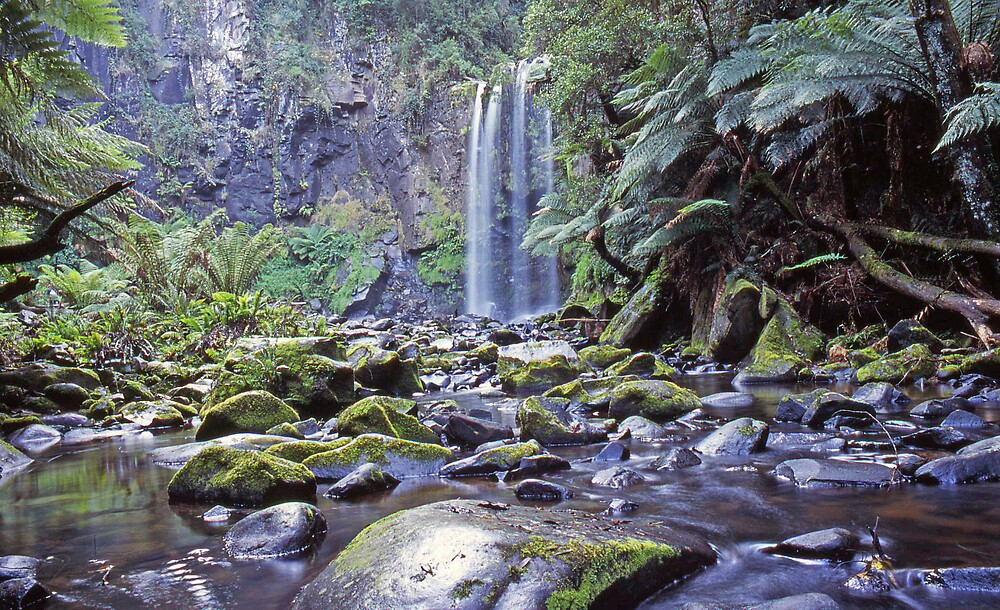Hopetoun Falls Otway Ranges - Vic by archieswell