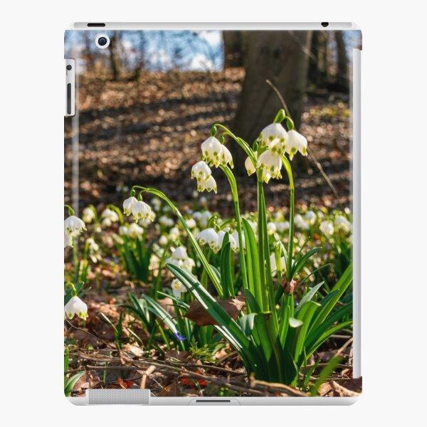 Beautiful blooming of White spring Snowflake iPad Snap Case