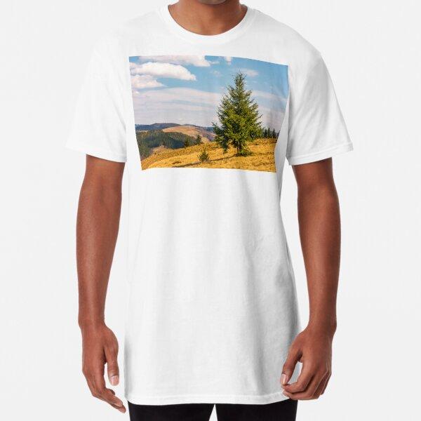 spruce forest in springtime landscape Long T-Shirt