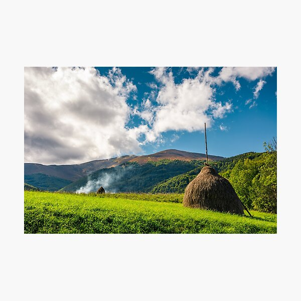haystacks in a field near the forest and mountain Photographic Print